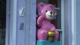 Bubble Bear Merrickville