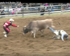 Amazing Arnprior Stampede : Can you have more fun?