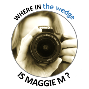 WHERE IN the wedge IS MAGGIE M?
