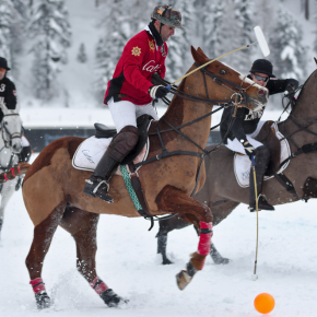 Manotick brings polo to the people