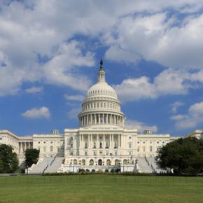 Tick-Talk : Washington Legislates Lyme, Predators, Permethrin,Protocols