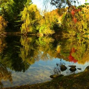 Burritt's Rapids : A Hamlet Worthy ofShakespeare