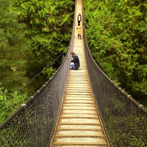 Lynn Canyon : North Vancouver Wild Experience